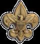 Boy Scouts fleur-de-lis